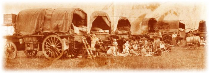 Ox Wagons of the Boers